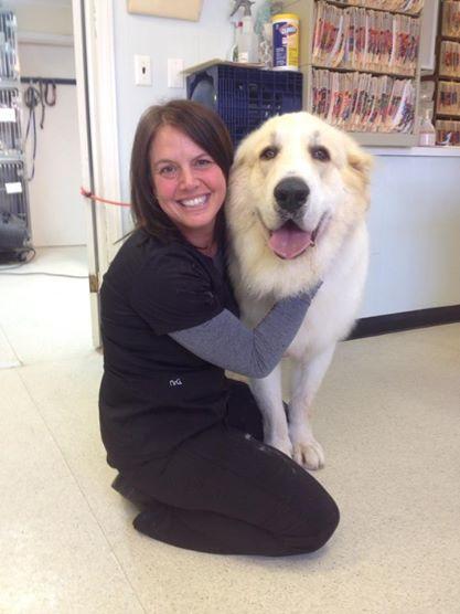 Melissa at Bedford Greenwich Animal Hospital